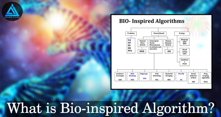 Bio-inspired-Algorithm